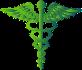 Médecin généraliste Homéopathe - Dr Fafchamps - Laeken
